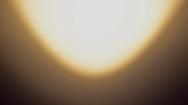 INNER VOICES - Symbiosis (2013) [generative sound installation]